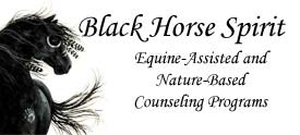 Black Horse Consulting